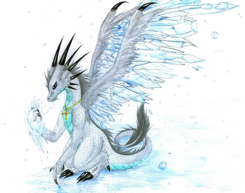 1004x791 Ice Dragon Cool Pictures Ice Dragon