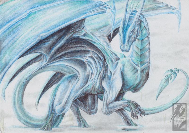 800x564 Ice Dragon Kupello By Umbraatramentum