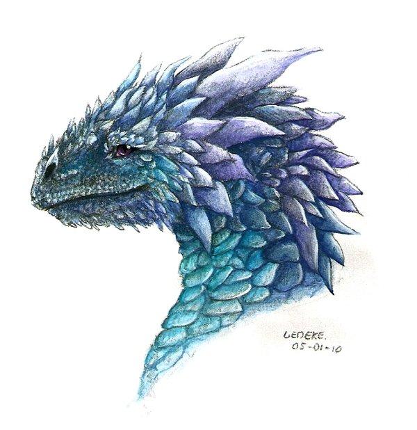 600x618 Ice Dragon For Teardropdragon By Liedeke