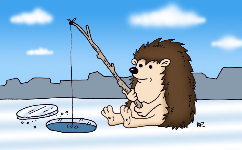 1000x621 Hedgehog Ice Fishing Cartoon Drawing