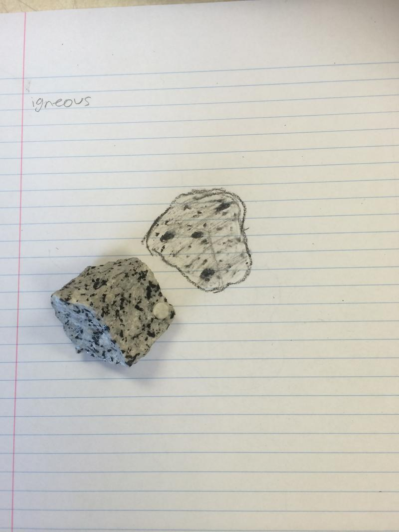 Igneous Rock Drawing At Getdrawingscom Free For Personal Use