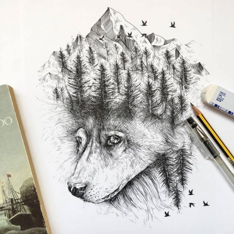 800x800 Pen Amp Ink Animal Illustrations By Italian Artist Alfred Basha