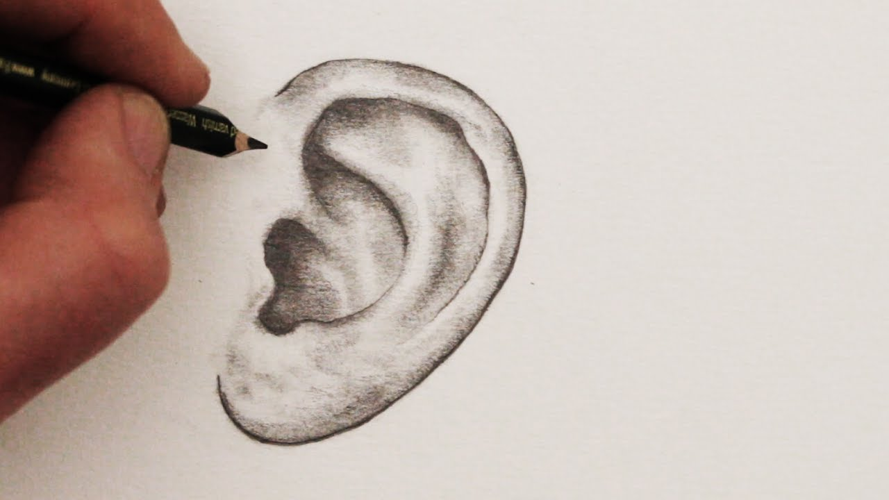 1280x720 How To Draw Ears Step By Step
