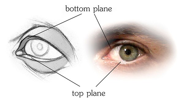 600x338 How To Draw Eyes Structure Proko
