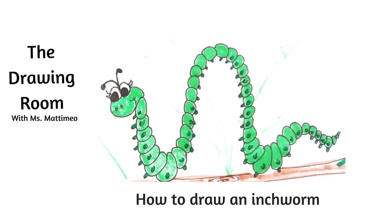 1280x720 How To Draw An Inchworm