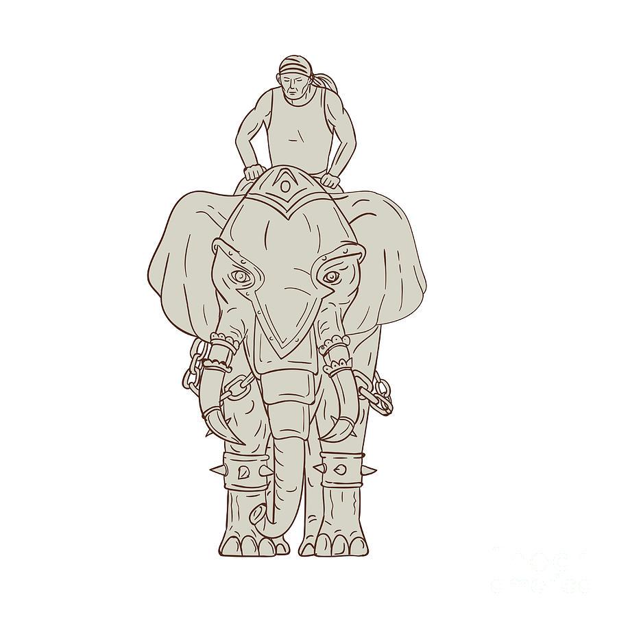 900x900 War Elephant Mahout Rider Drawing Digital Art By Aloysius Patrimonio