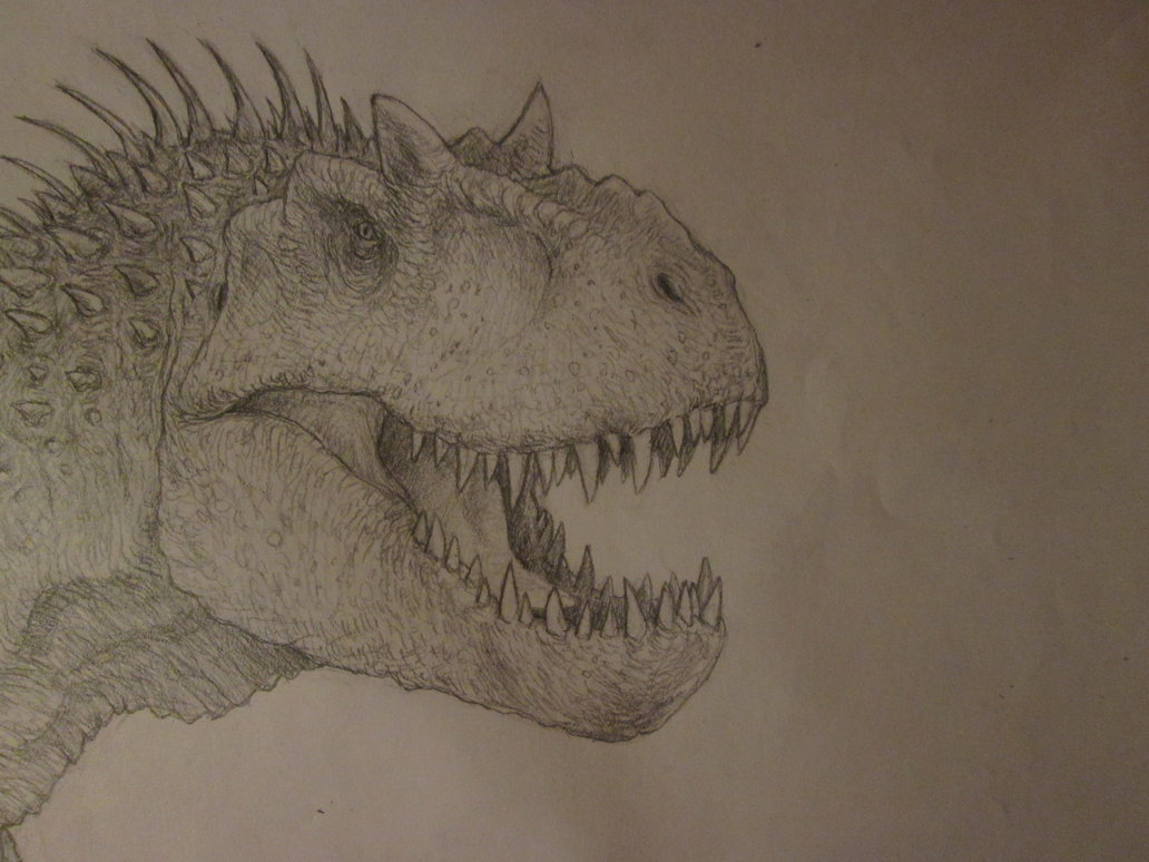 1032x774 Indominus Rex Concept Drawing, Head Shot By Anthonyhoogsteden