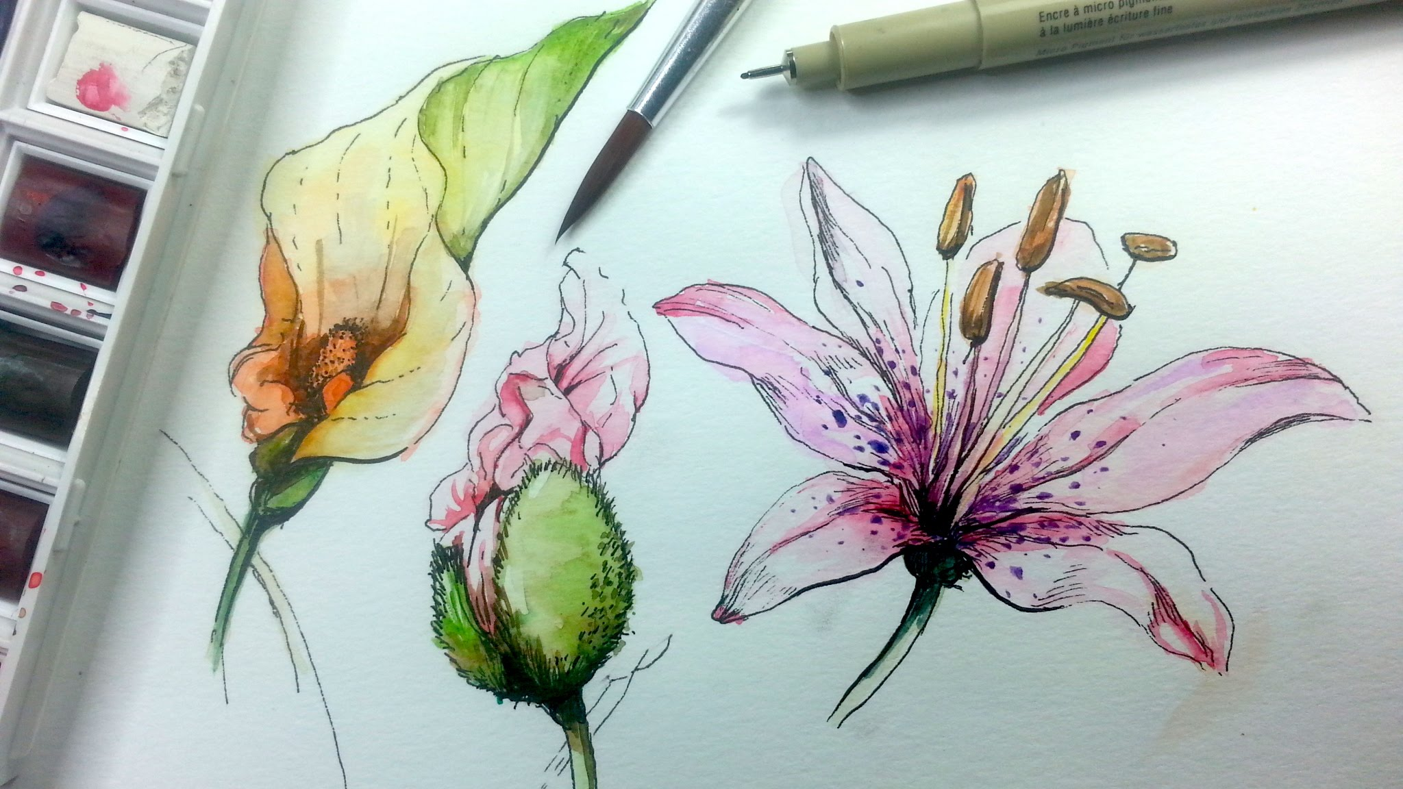 2048x1152 How To Draw Amp Paint Flowers With Ink And Watercolor Part 1