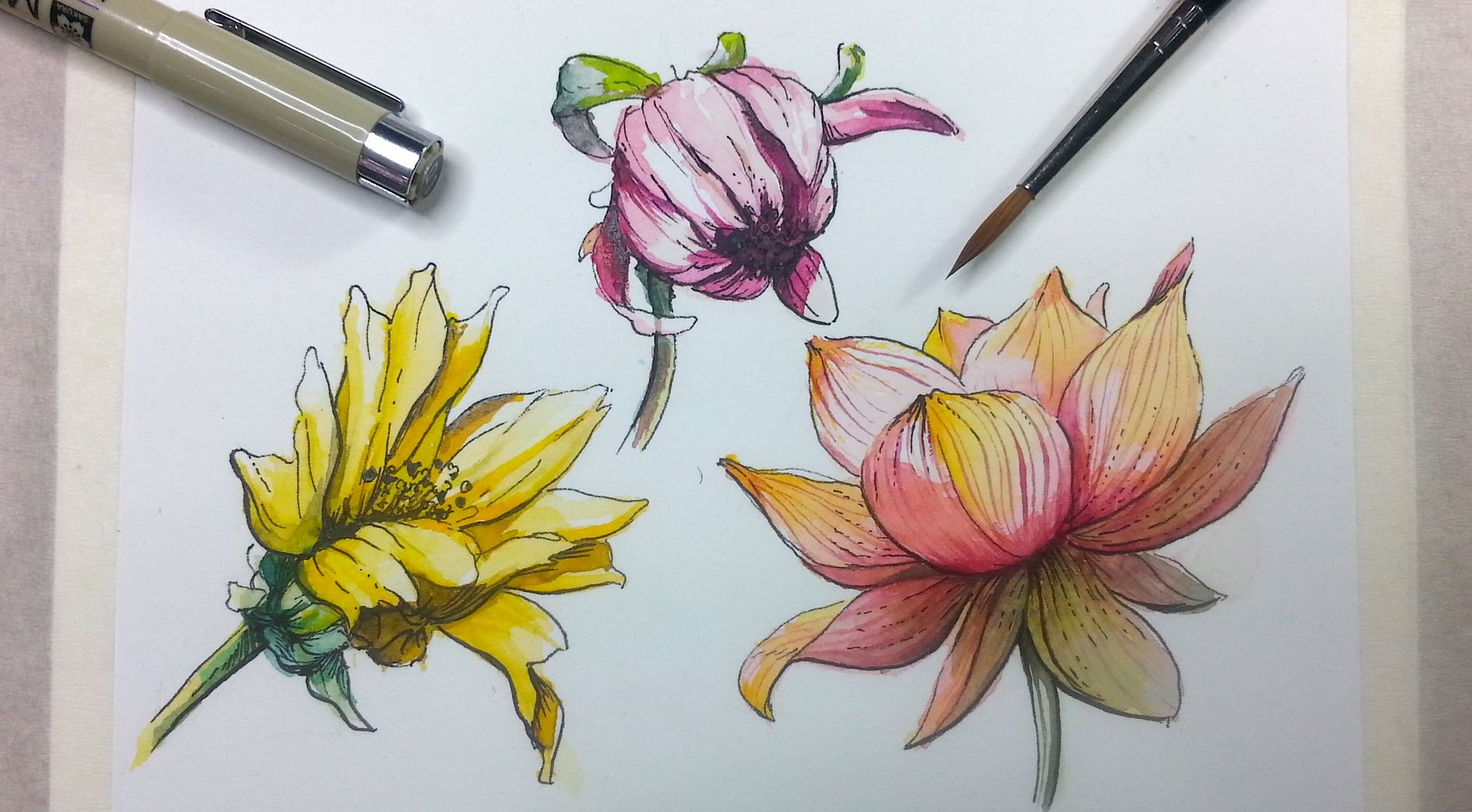 1892x1044 How To Draw Amp Paint Flowers With Ink And Watercolor Part 2