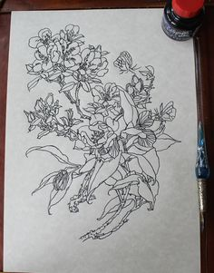 236x301 Original Drawing Of Flowers And A Bird Parrot, Dip Pen And Ink