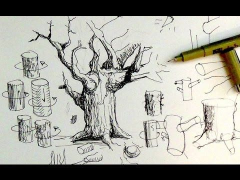 480x360 Pen Ink Drawing Tutorials How To Draw Tree Trunks Branches Art