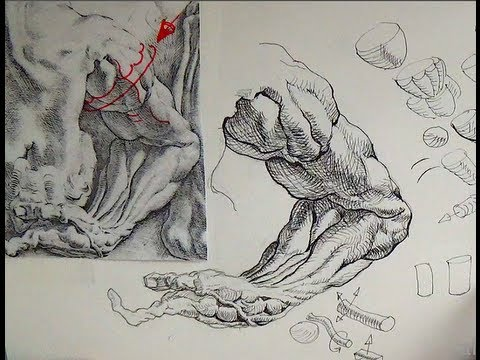 480x360 Pen Amp Ink Drawing Tutorials How To Draw An Arm Like Peter Paul