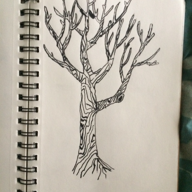 640x640 Pen And Ink Tree Drawing By Rogo2002