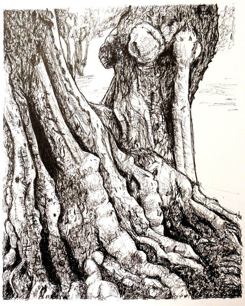 801x998 Tree Pen And Ink By Christinaprice Pen Amp Ink