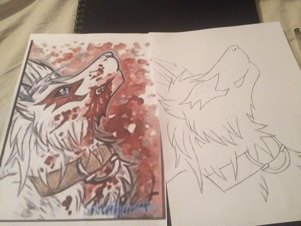 960x720 My Insane Wolf Drawing So Far Xd By Correna