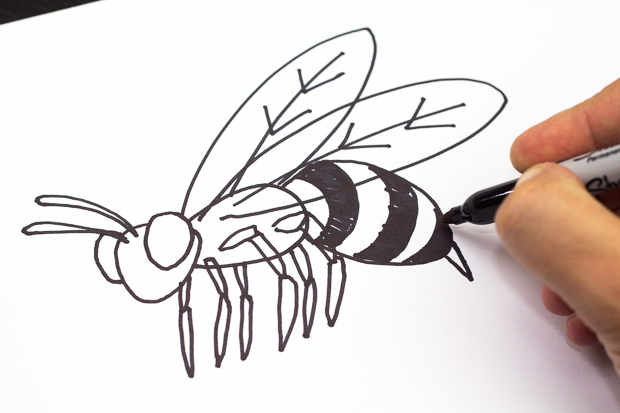 620x413 How To Draw A Bee