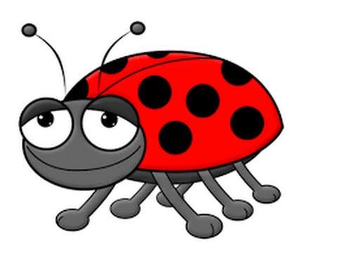 480x360 How To Draw A Lady Bug Step By Step
