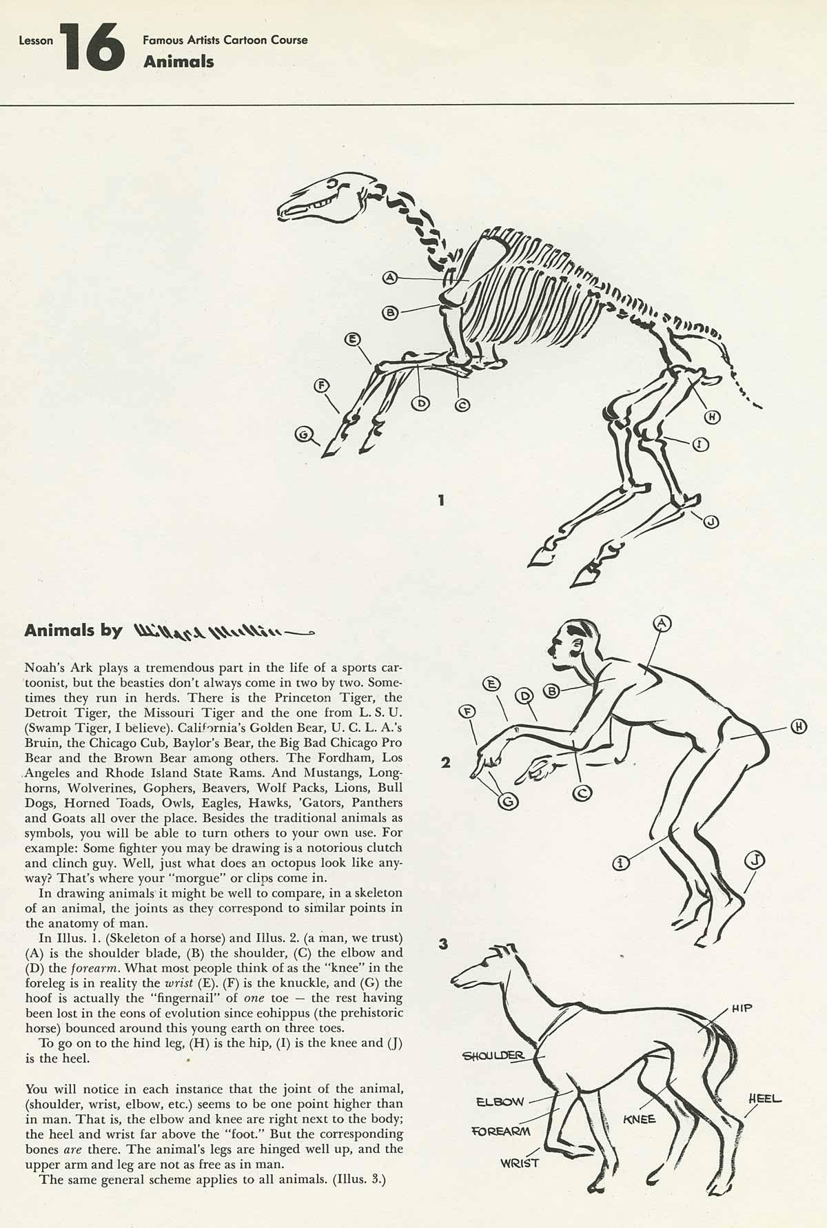 1200x1782 Instruction Willard Mullin On Animals