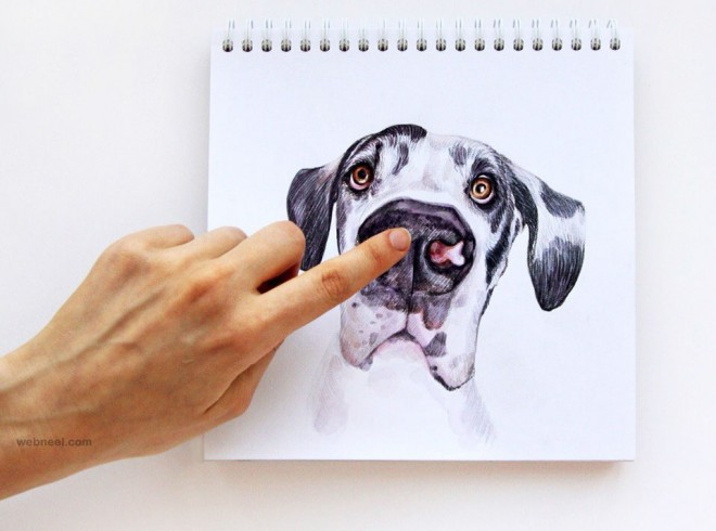 660x490 Interactive Illustration Dog Drawing Idea By Valerie Susik 19
