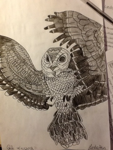 360x480 Owl Drawing Cool Animal Pencil Pen Paper Hobby Birds Nature