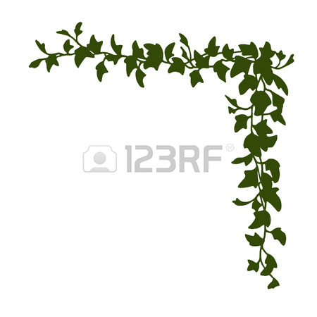 450x450 92 English Ivy Cliparts, Stock Vector And Royalty Free English Ivy