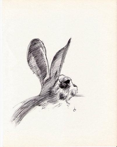 401x504 Jack Rabbit By Pintor Rabid For Rabbits Rabbit