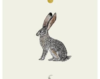 340x270 Rabbit Art Print From An Original Drawing Rabbit Wall Art