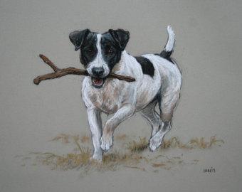 340x270 Original Soft Pastel Jack Russell Terrier Dog Art Drawing Sketch
