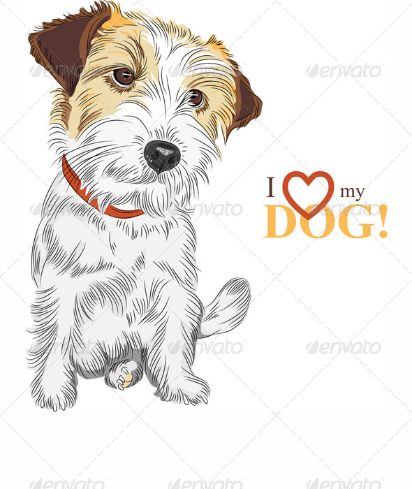 590x700 Vector Sketch Dog Jack Russell Terrier Breed By Kavalenkava