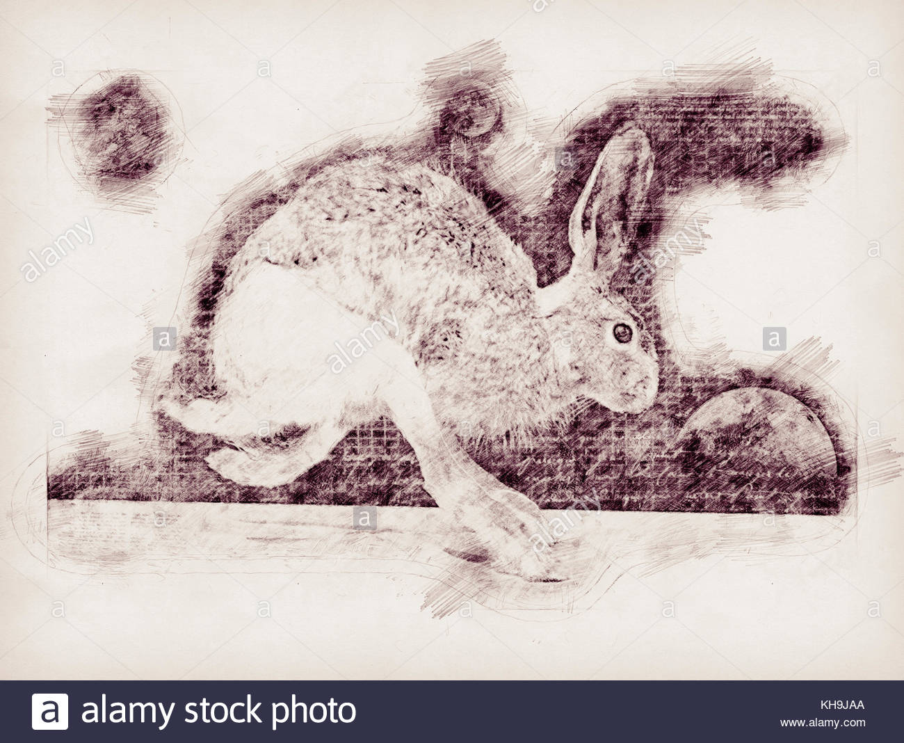1300x1068 A Pencil Drawing Of A Jack Rabbit In Mid Stride With Grid