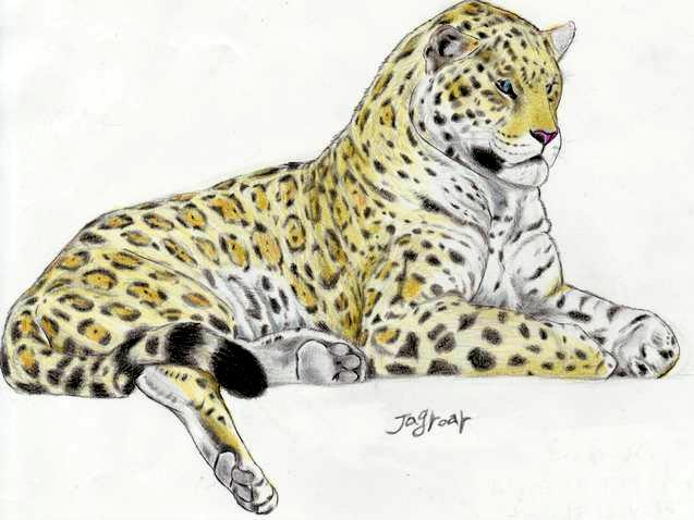 637x478 Giant Pleistocene Jaguar 2 By Jagroar On A Regular