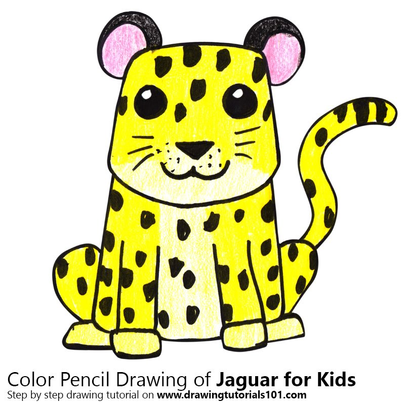 800x800 Learn How To Draw A Jaguar For Kids (Animals For Kids) Step By