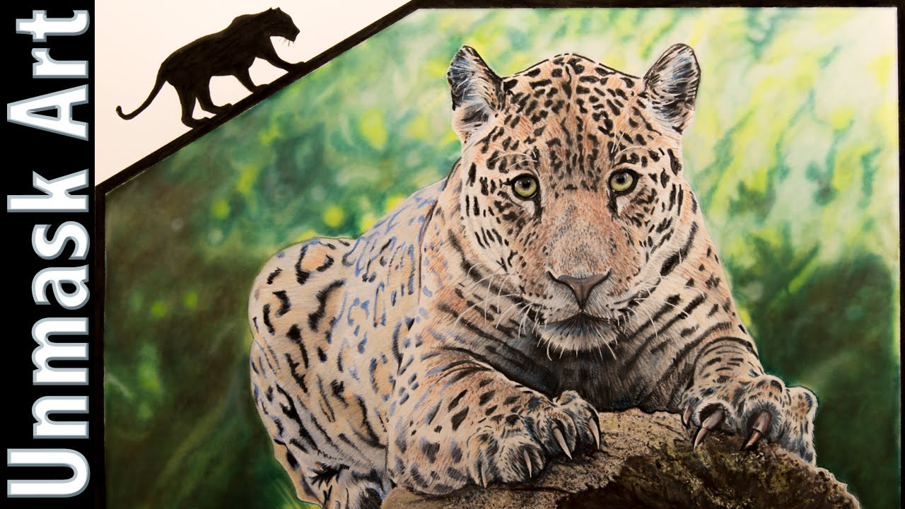 1280x720 Jaguar Colored Pencil Drawing Time Lapse