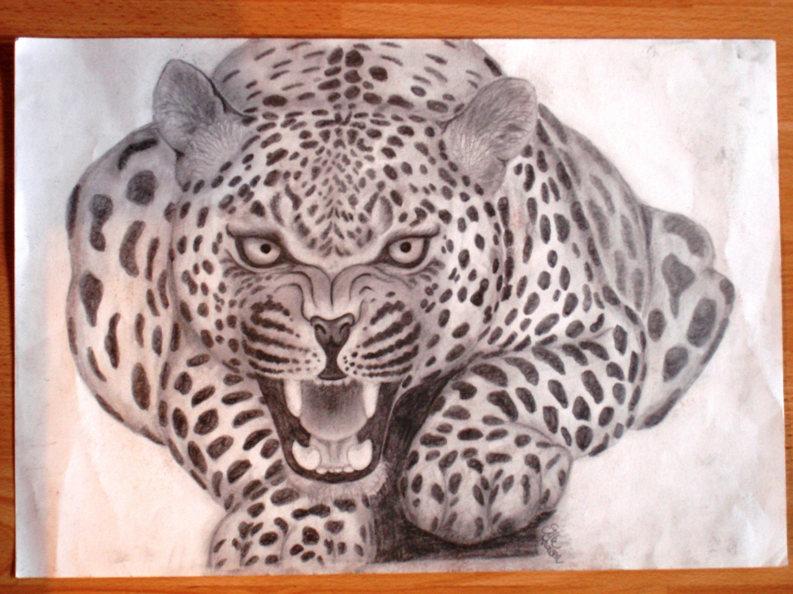 2560x1920 Drawings Of Fans Jaguar