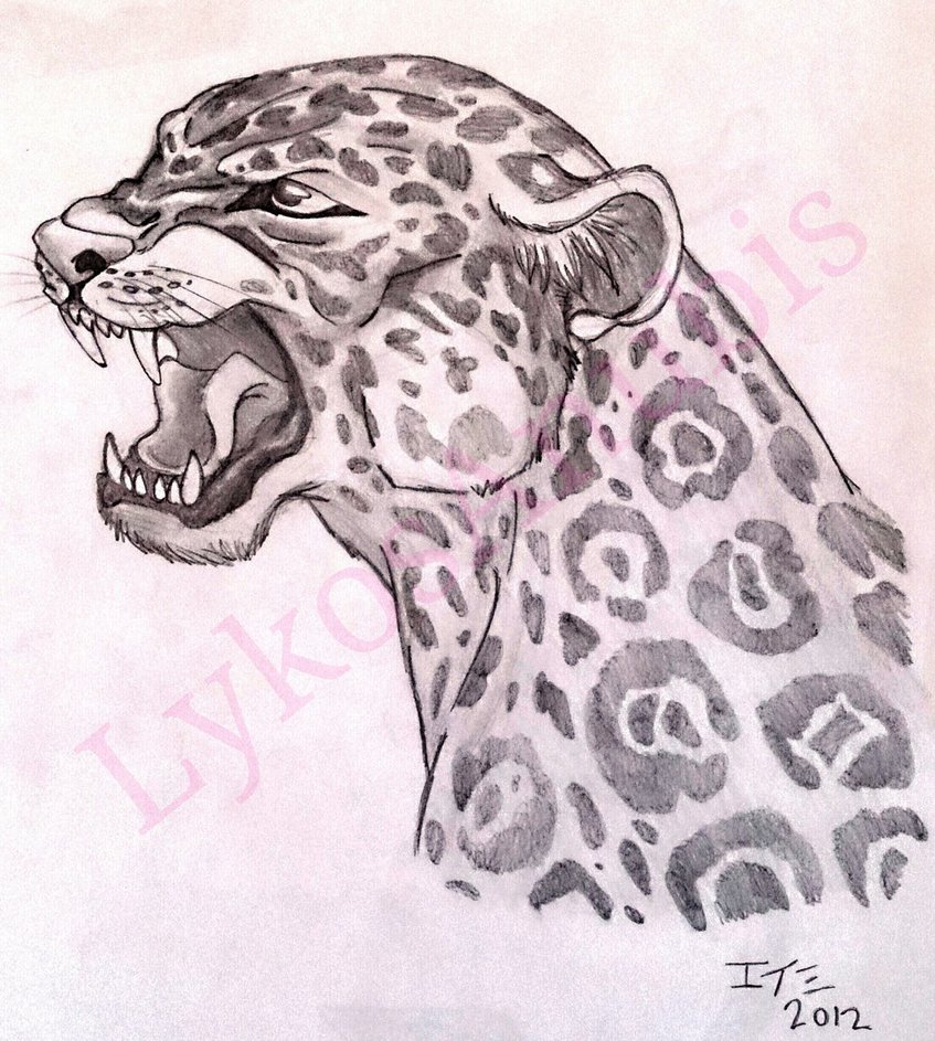 847x943 Screaming Jaguar By Lykosanubis