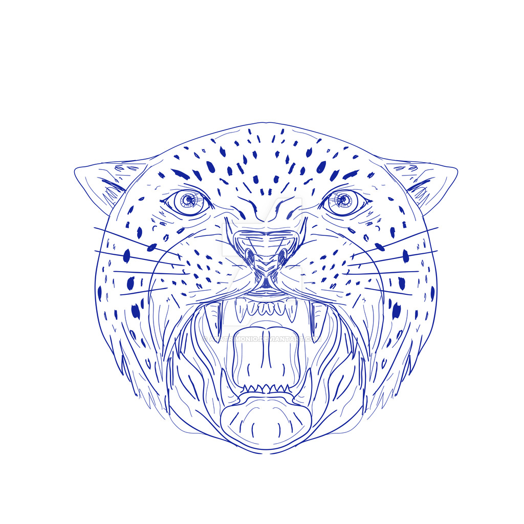 1024x1024 Angry Jaguar Head Drawing By Apatrimonio