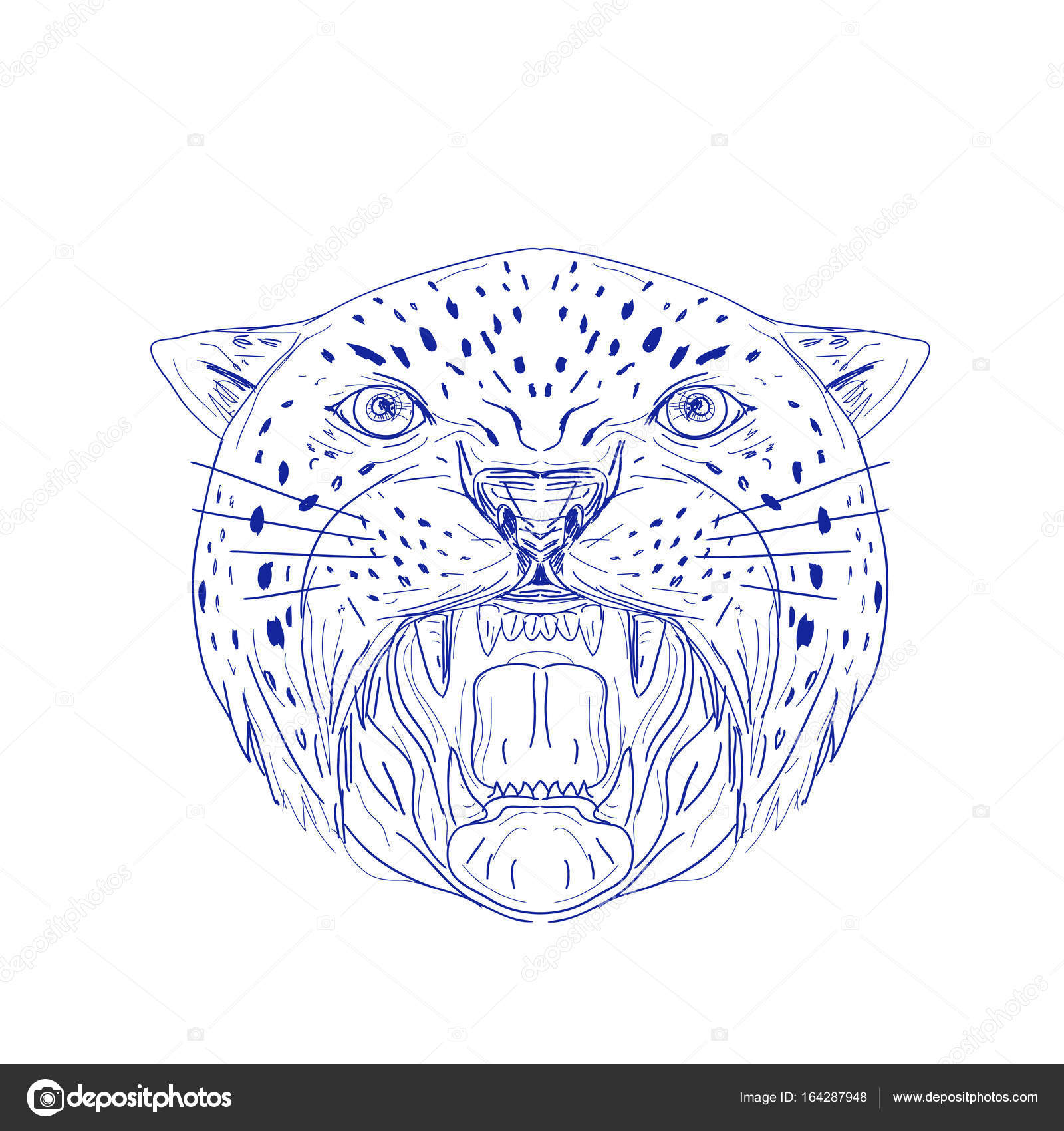 1600x1700 Angry Jaguar Head Drawing Stock Vector Patrimonio