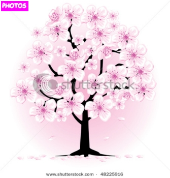 335x350 Japanese Cherry Blossom Quotes. Quotesgram By @quotesgram