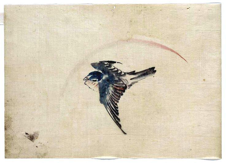 736x531 Japan Bird