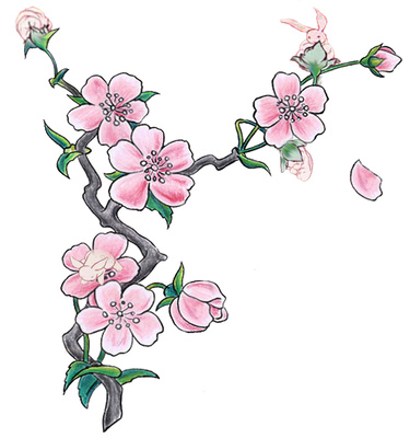 375x400 Cherry Blossom Illustration Pink Flowers Clipart Just Free Image