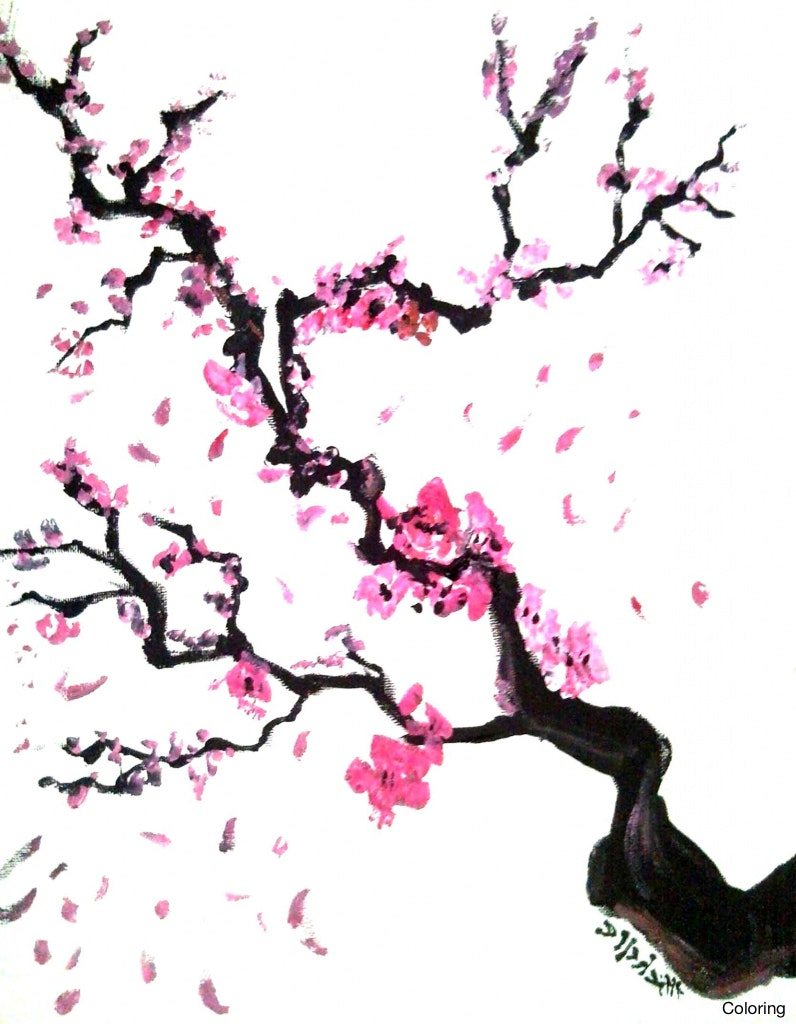 796x1024 Sakura Natalia Stangrit Cherry Blossom Drawings Coloring Japanese