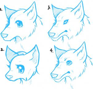 302x288 How To Draw Anime Wolves, Anime Wolves, Step By Step, Anime