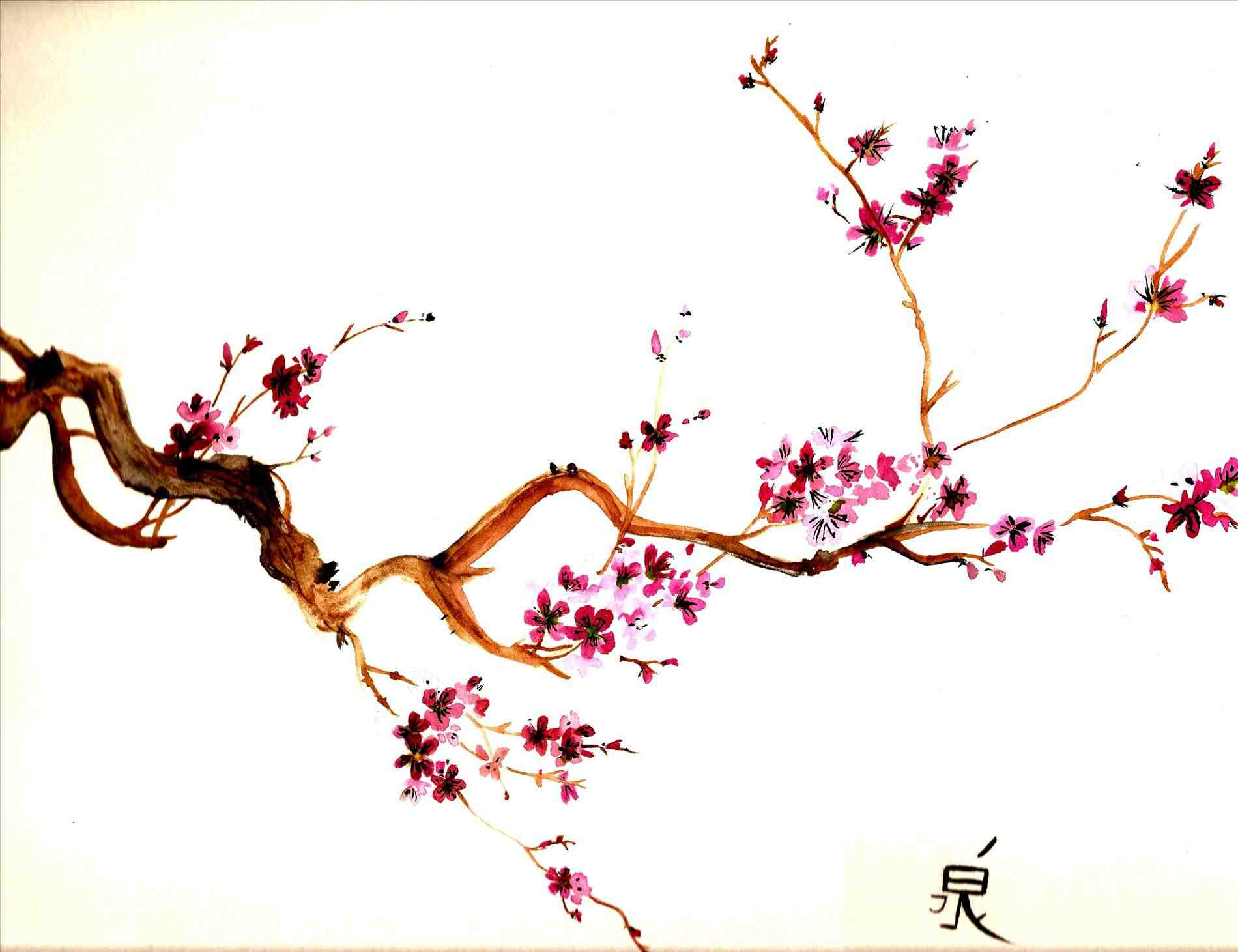 1900x1461 Cherry Blossoms Drawing