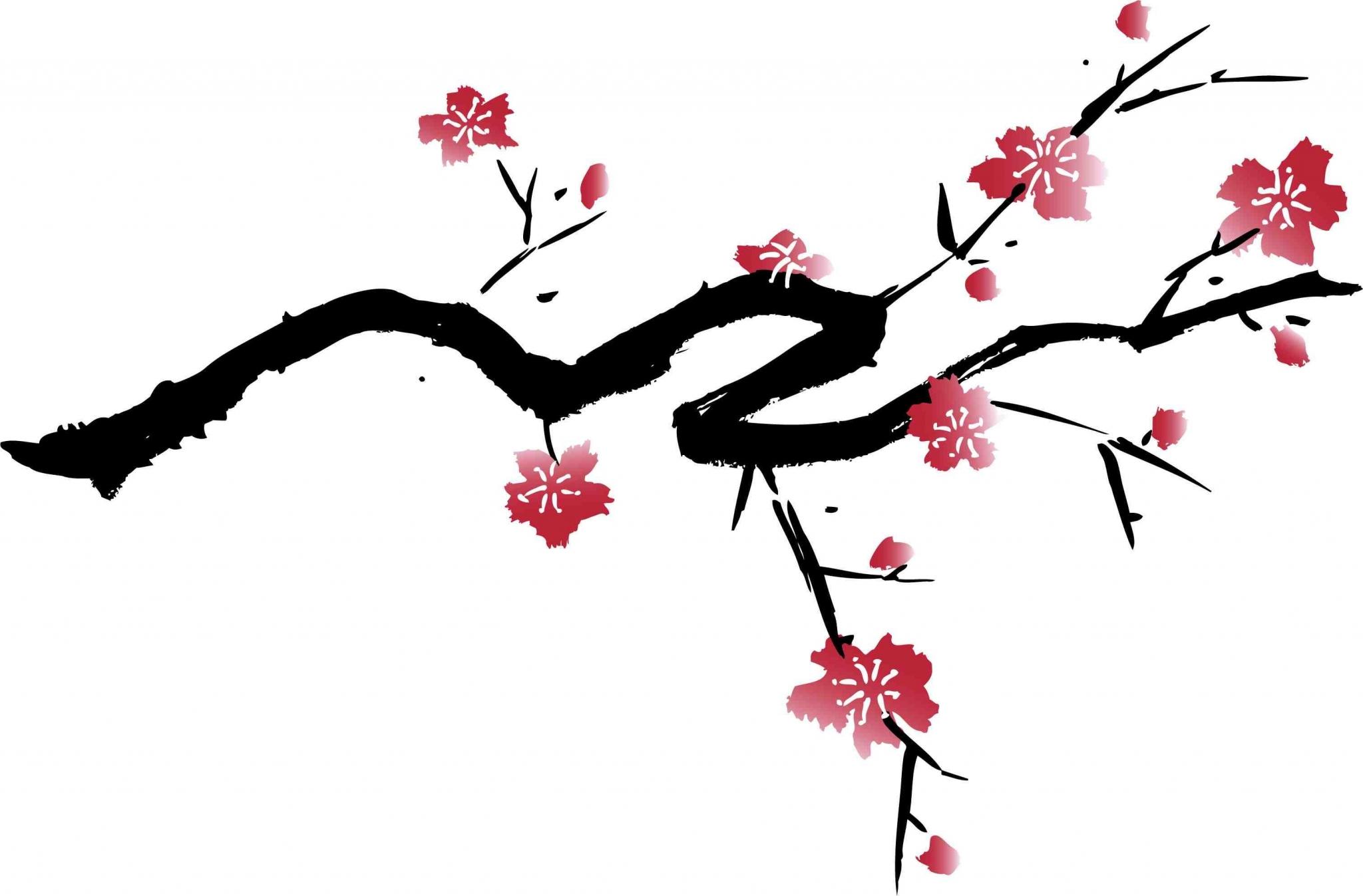2048x1347 Cherry Blossom High Resolution Wallpapers Widescreen Ololoshenka