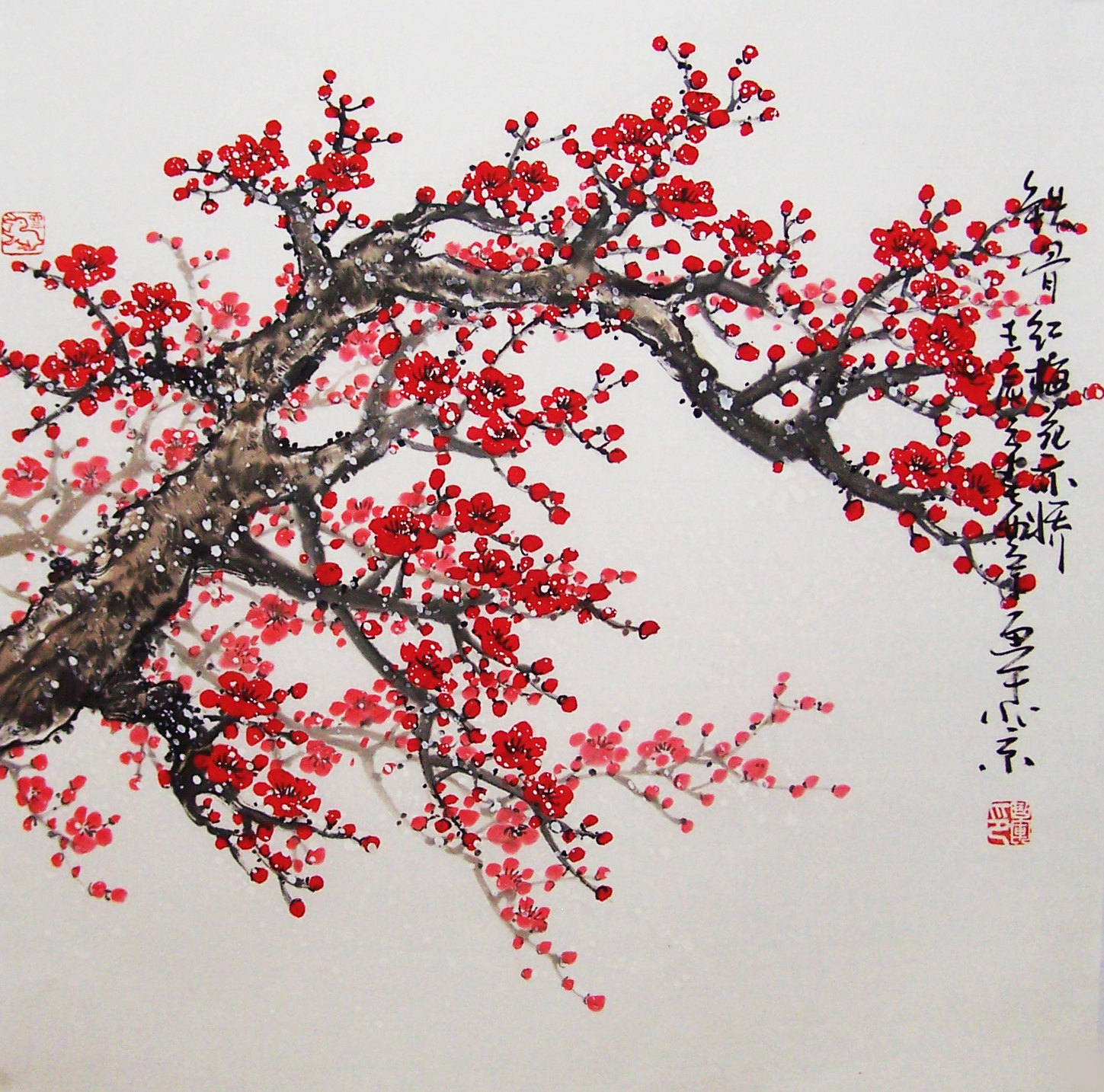 1449x1434 Chinese Cherry Blossom Drawing Japanese Cherry Blossom Tree