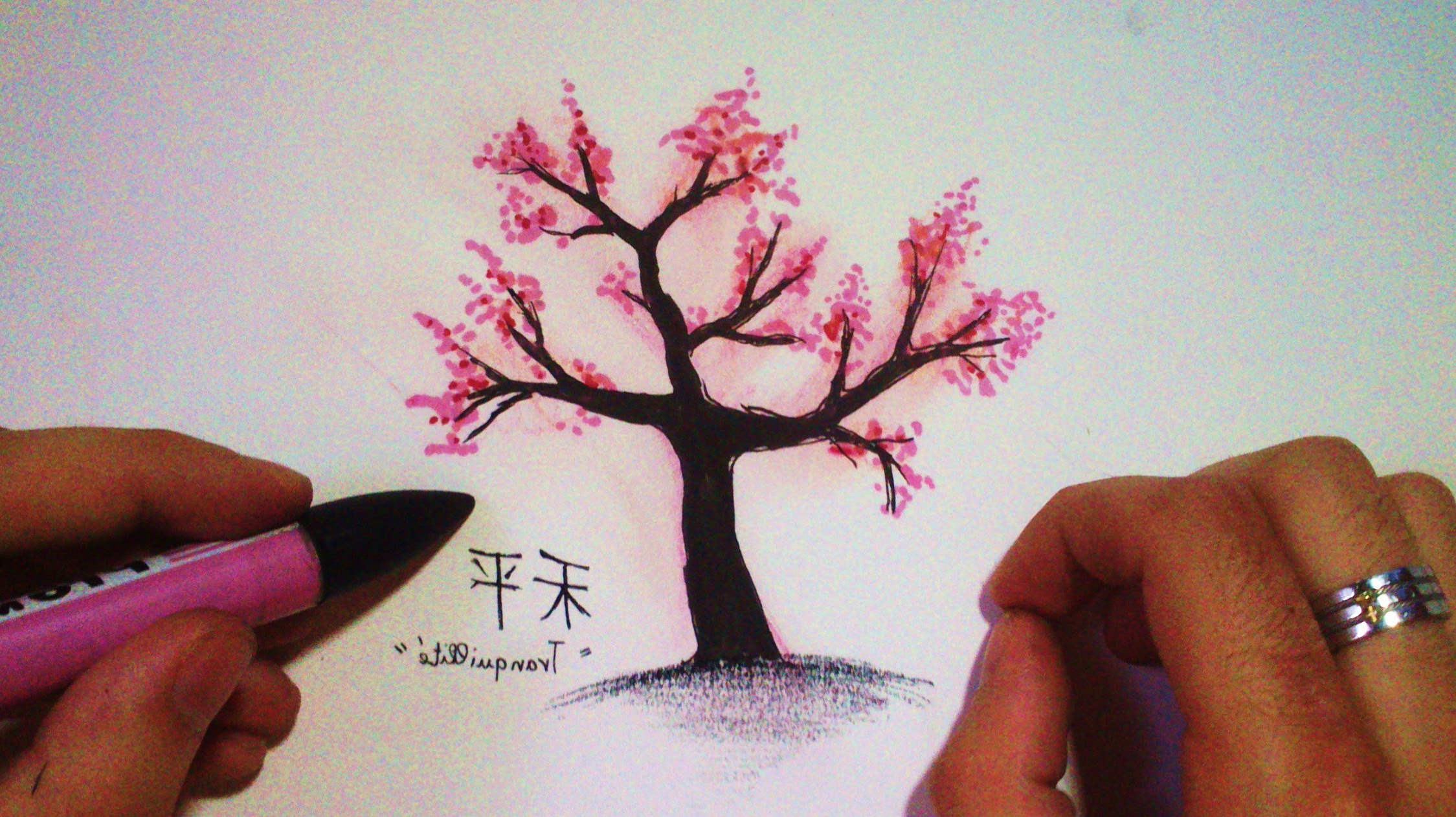 2249x1262 Colored Pencil Draw Cherry Blossom Branch How To Draw A Japanese