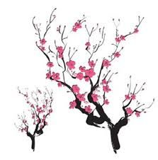 223x226 8 Best Tattoo Ideas Images On Cherry Blossoms