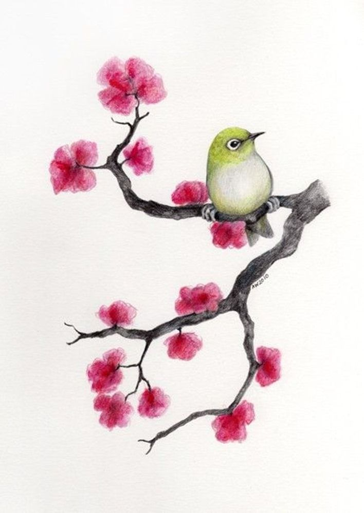 708x999 Drawing Cherry Blossom Decoupage With Birds Cherry