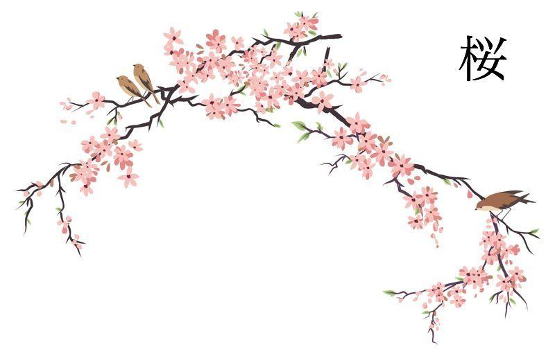 800x514 Gallery Japanese Cherry Blossom Artwork,