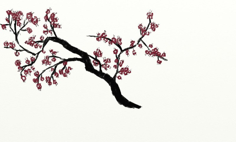 800x483 Japanese Cherry Tree By Euwin